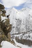 Alpine Ibex (Capra Ibex Ibex) Part Way Up Rock Face, Gran Paradiso National Park, Italy Photographic Print by E. Haarberg