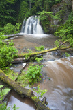 Waterfall with a Fallen Tree, Fairy Glen Rspb Reserve, Inverness-Shire, Scotland, UK, July Photographic Print by Peter Cairns