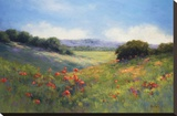 Poppies with a View Stretched Canvas Print by Alice Weil