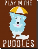 Play in the Puddles Stretched Canvas Print by Ginger Oliphant