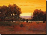 Autumn Glow Stretched Canvas Print by Tom Perkinson