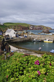 St Abbs Harbour (St Abbs and Eyemouth Voluntary Marine Reserve), Berwickshire, Scotland, August Photographic Print by Linda Pitkin