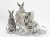 Two Baby Silver Rabbits in a Gift Bag with Christmas Tinsel Photographic Print by Mark Taylor