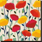 Cheerful Poppies Stretched Canvas Print by Carrie Schmitt