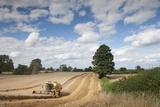 Combine Harvester Harvesting Oats (Avena Sativa), Haregill Lodge Farm, Ellingstring,Yorkshire, UK Photographic Print by Paul Harris