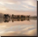 Dawn Mist on the Amazon Stretched Canvas Print by Andy Mumford
