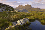 Suilven in Early Morning Light, Coigach - Assynt Swt, Sutherland, Highlands, Scotland, UK, June Photographic Print by Joe Cornish