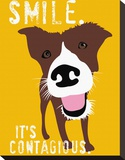 Smile Stretched Canvas Print by Ginger Oliphant