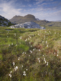 Suilven, Early Summer Morning, Coigach - Assynt Swt, Sutherland, Highlands, Scotland, UK, June 2011 Photographic Print by Joe Cornish
