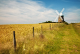 Fence Bordering Field of Wheat and Track with Halnaker Windmill, South Downs Np, UK, July Photographic Print by Guy Edwardes