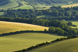 View of Downland and Arable Farmland from Wilmington Hill, South Downs Np, East Sussex, UK Photographic Print by Guy Edwardes