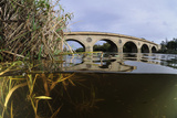 Split-Level View of the River Tweed and Coldstream Bridge, Berwickshire, Scotland, UK, October Photographic Print by Linda Pitkin