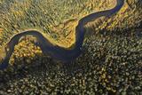 Aerial View of Kitkajoki River, Oulanka National Park, Finland, September 2008 Photographic Print by  Widstrand