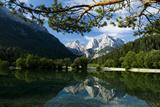 Mount Prisojnik (2,547M) and Mount Razor (2,601M) with Reflection in Pond, Triglav Np, Slovenia Photographic Print by  Zupanc