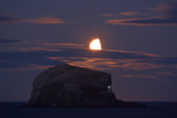 Northern Gannet (Morus Bassanus) Colony, Bass Rock with the Moon Rising, Firth of Forth, Scotland Papier Photo par  Green