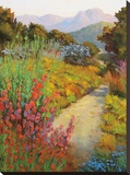 Garden Path Stretched Canvas Print by Ellie Freudenstein