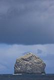 Stac Lee Home to a Northern Gannet (Morus Bassanus) Colony, St. Kilda Archipelago, Scotland, UK Photographic Print by  Muñoz