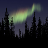 Aurora Borealis Photographic Print by Mark Taylor