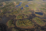 Aerial View of Peat Bog, Oulanka National Park, Finland, September 2008 Photographic Print by  Widstrand