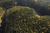 Aerial View of Kitkajoki River, Oulanka National Park, Finland, September 2008 Photographic Print by  Widstrand