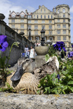 Female Mallard Duck (Anas Platyrhynchos) Nesting in Stone Flowerpot Among Pansies, Bath, UK Photographic Print by Nick Upton