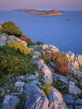 Coastal Landscape, Kornati National Park, Mana Island, Croatia, May 2009 Wwe Book Photographic Print by  Popp-Hackner