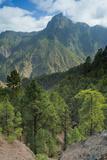 Berjenado Peak, Caldera De Taburiente Np, La Palma, Canary Islands, Spain, March 2009 Photographic Print by  Relanzón