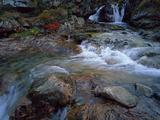 Ruisseau Du Cot (Stream) Near Cirque De Troumouse, Pyrenees, France, October 2008 Photographic Print by  Popp-Hackner
