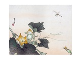 Dragonfly and a Pumpkin Blossom Giclee Print by Ogata Gekko