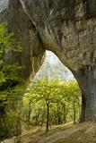 Karstic Rock Arch in the Korana Canjon, Plitvice Lakes National Park, Croatia, October 2008 Photographic Print by  Biancarelli