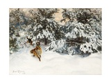 Winter Landscape with Fox and Hounds Giclée-tryk af Bruno Liljefors