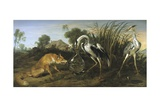 Fable of the Fox and the Heron Reproduction procédé giclée par Frans Snyders