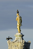 Common Comorants Perched on Statue Drying Out, Bushy Park, London, England, UK, November Reproduction photographique par Terry Whittaker