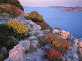 View from Mana Island South Along the Islands of Kornati National Park, Croatia, May 2009 Photographic Print by  Popp-Hackner