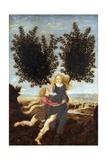 Apollo and Daphne Giclee Print by Antonio Del Pollaiuolo