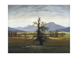 The Solitary Tree (Village Landscape in Morning Light) Giclee Print by Caspar David Friedrich