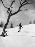 1920s-1930s Silhouette of Woman Cross Country Skier Near Old Tree Photographic Print