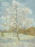 The Pink Peach Tree Gicleetryck av Vincent van Gogh