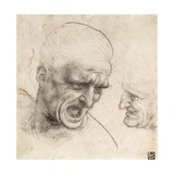 Study for the Heads of Two Soldiers in the Battle of Anghiari Giclee Print by  Leonardo da Vinci