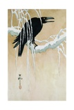 Raven on a Snowy Branch Reproduction procédé giclée par Koson Ikeda