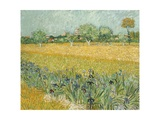 Field with Irises Near Arles Giclee Print by Vincent van Gogh