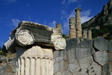 Ionic Marble Column Below Temple of Apollo Photographic Print by Paul Souders