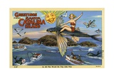 Greeting Card from Santa Catalina Island Giclee Print