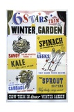 6 Stars from the Winter Garden Poster Giclee Print