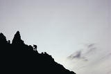 Female Hiker Climbing Twin Peaks Photographic Print by Paul Souders