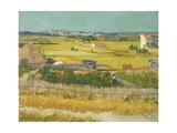 Vincent van Gogh - The Harvest Digitálně vytištěná reprodukce