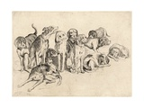 Study of Eleven Hounds Giclee Print by Wenceslas Hollar