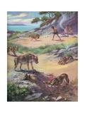 Jackals Stealing Food from Cavemen Giclee Print