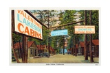 Postcard of Valentine's Lakeside Cabins Giclee Print