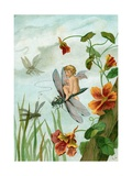 Winged Fairy Riding a Dragonfly Near Nasturtium Blooms Giclee Print